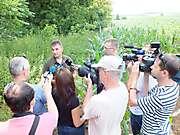 Adopcia mláďaťa Orla kráľovského v pohorí Tríbeč pri Nitre, 9.7.2015_1
